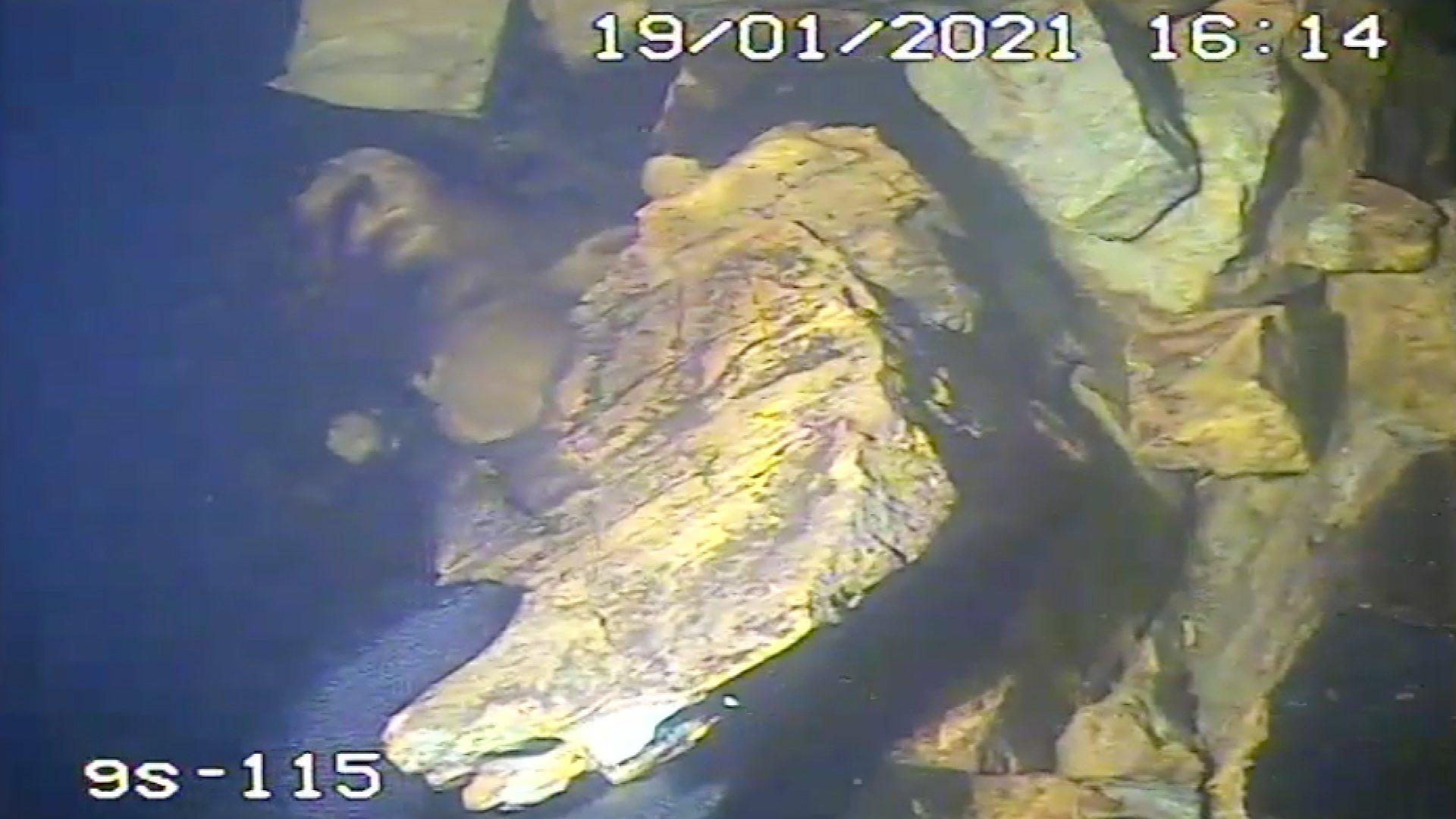 Dykkervideo fra byggingen av Geithus bru